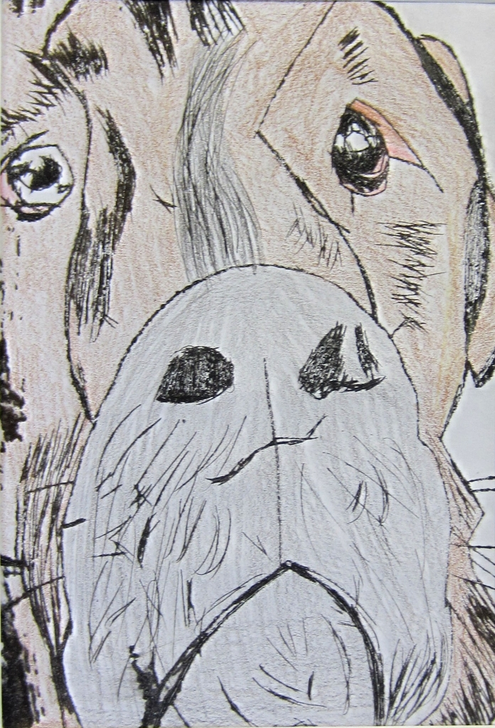 """Dozer"" Rhea Worsham Printmaking and Colored Pencil 8th, FAMS NFS"