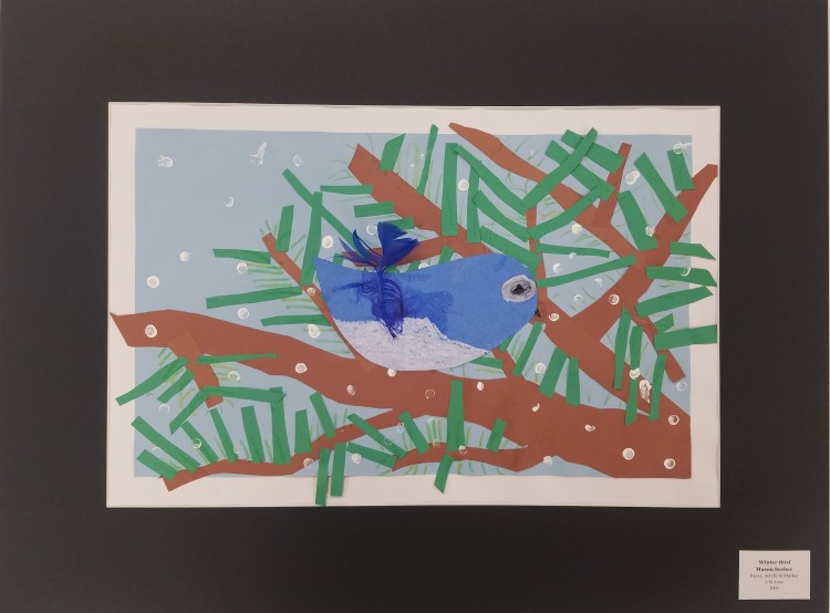 Winter Bird, Mason Seeber, Paper, Acrylic _ Marker, 2, St Joes, NFS